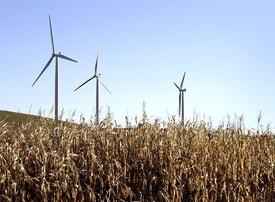 Saudi Arabia seeks bids for first major wind power project