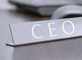 Only a third of new CEOs admit being prepared for the job, says new survey