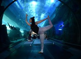 In pictures: First 'underwater yoga' retreat at The Dubai Mall