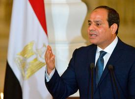 UAE, Egypt launch $20bn joint investment programme