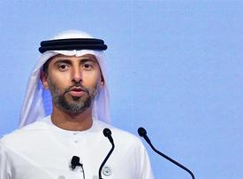 China trade war, US shale among 2019 concerns for UAE energy minister