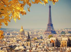 Ooh la la! Saudi Arabia drops bid to make new French connection