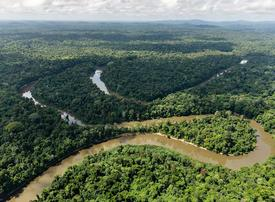 Video: Could blockchain save the Amazon rainforest?