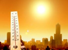 Dubai picked to host MENA Climate Week 2020 during Expo mega event