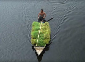 Video: The floating farms of Bangladesh