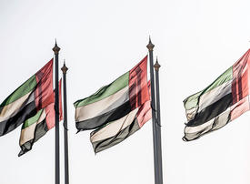 UAE says six troops killed in 'military collision'
