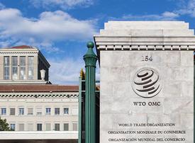 UAE files WTO complaint over Qatar goods ban