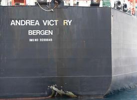 UAE welcomes international help to probe ship attacks