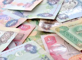 UAE tax revenues exceed $6.8bn, 5.5% of public purse