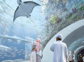 Youth concepts key to success of Oman malls, says JLL