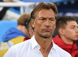 Saudi Football Federation appoints Herve Renard as national team coach