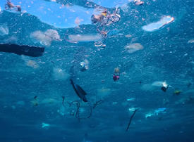 Video: Curing our plastic problem
