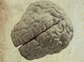 Video: Building a more brain-like computer