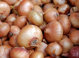 India to import 100,000 tons of onions to keep prices in check