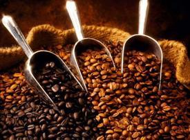 Dubai holds first coffee auction as it seeks global status