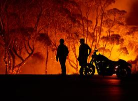 UAE residents can now donate online to the Australia bushfire campaign