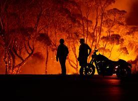 UAE's response to Australian bushfires disaster 'breathtaking', says ambassadoor
