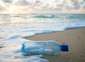 Video: Dubai acts to stem the tide of single use plastic