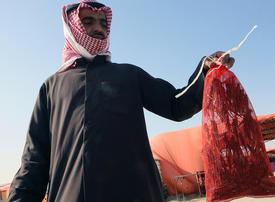 Health-conscious Kuwaiti youth rekindling love of locusts