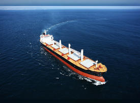 ADNOC's shipping unit to test biofuel to cut emissions