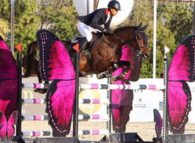 In pictures: Amir's Cup Show Jumping Championship in Kuwait