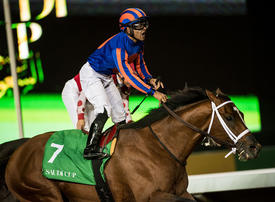 Trainer of Saudi Cup race winner Maximum Security among 27 charged over doping scheme