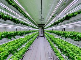 Smart Acres vertical farm to launch in UAE in Q3