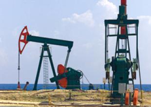 Abu Dhabi's Borealis seeking chemical acquisitions