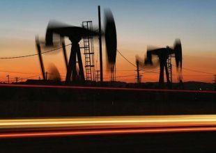 OMV eyes Middle East market in Petrol Ofisi buyout