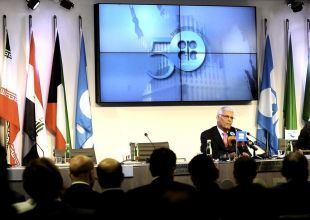 Saudis fear climate talks will hurt OPEC oil income