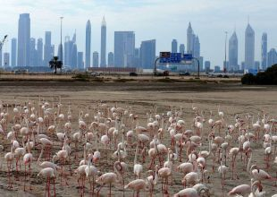 Average Dubai property prices slump 2% in past 3 months