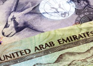 UAE's economy set for 'soft landing' despite oil slump