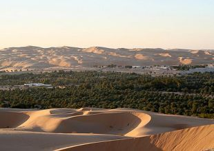 Two UAE date palm oases first to be recognised by UN