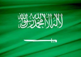 Saudi Arabia said to execute 14 over Shiite protests