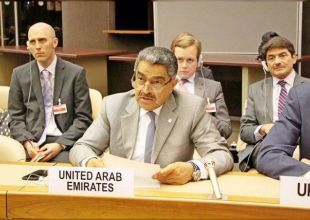 Expatriates are not a source of threat, says UAE official