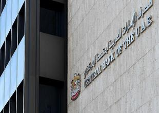 Total UAE banking reserves rise to over $81bn