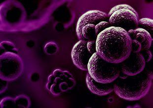 Indian biotech firm plans $40m Dubai hub to fight superbugs