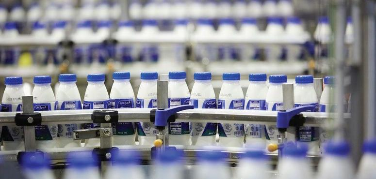 Dubai denies claims of cattle being injecting with milk-inducing hormones
