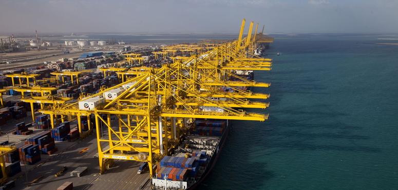 Five Indian states in talks with DP World about logistics centres, says Indian UAE ambassador