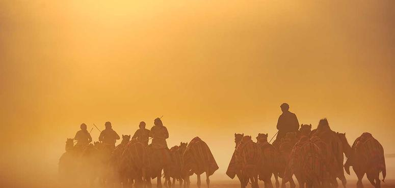 In pictures: King Abdulaziz Camels Festival announces winners of The Best Camel Photography Award