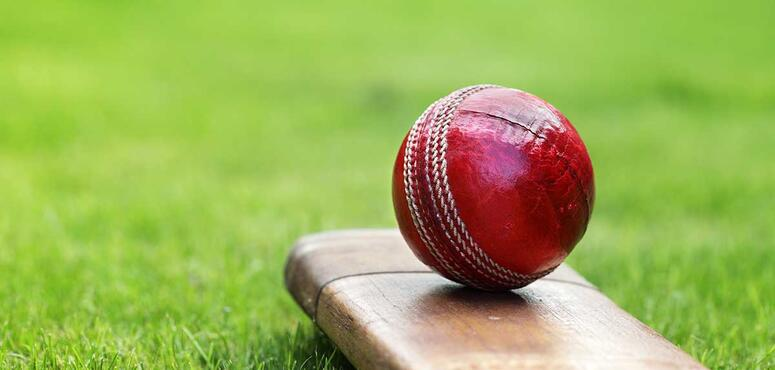 Indian cricket team owner arrested over illegal bets with Dubai-based bookie