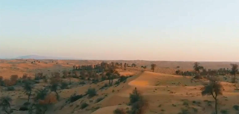 National Geographic Abu Dhabi announces Sharjah reserves documentary series