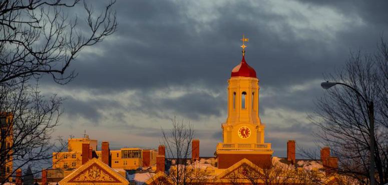 Arab Harvard student refused US visa after social media search