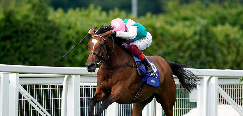 Superstar horse Enable to stay in training, says Saudi owner