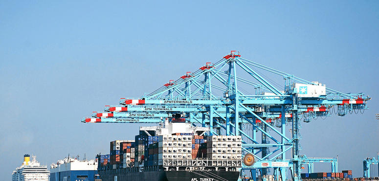 Opinion: powering economic progress in the Gulf