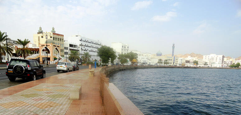 Oman suspends all public transport as coronavirus cases reach 39