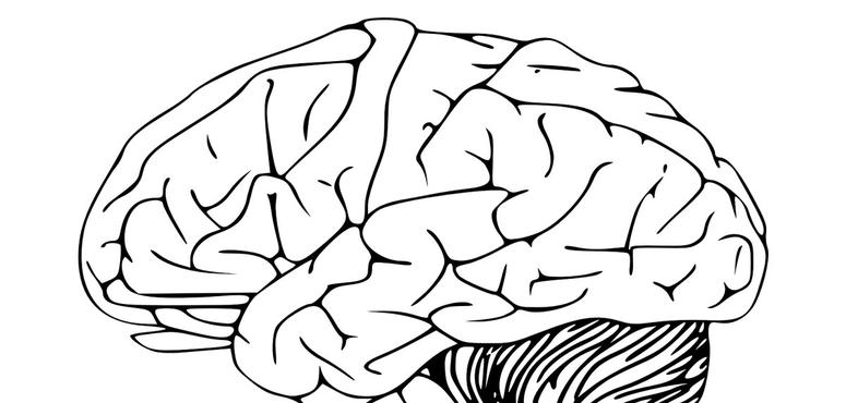 Video: How our brains are processing the pandemic