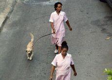 Egypt bans sending maids to work in Saudi Arabia
