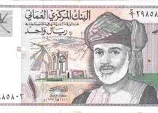 Oman likely to privatise one more state firm in 2014