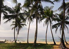Mideast tourists to Sri Lanka surge by 85%